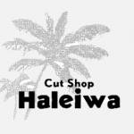haleiwalogopaypayverpng